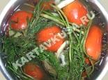 холодные закуски | малосольные помидоры | рецепт и фото
