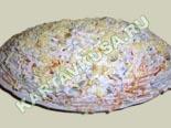салаты из рыбы и морепродуктов | салат из консервированной рыбы - рецепт с фото