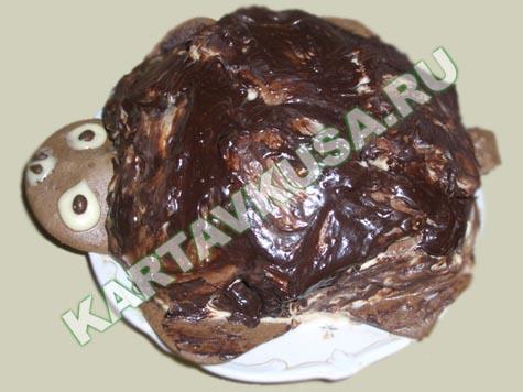 Крохотное клоканье торт черепашка с
